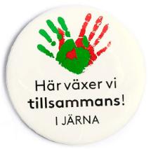 Gymnasiesärskola i Järna